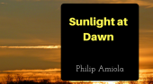 Book Review –  Sunlight at Dawn